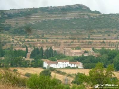 Parque Moncayo; Tarazona;Veruela; album fotos viaje sierra de peñalara los ancares lucenses